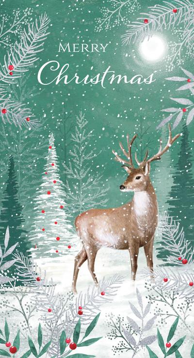 di-brookes-00409-dib-woodland-deer-jpg