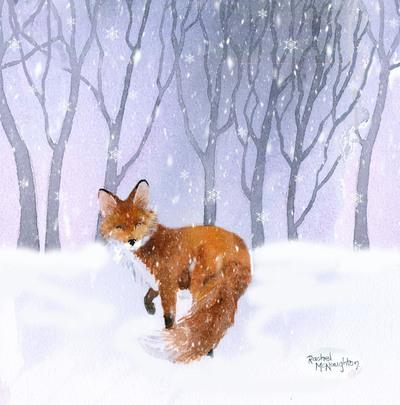 snowy-fox-jpg-1