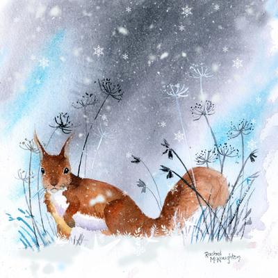 snowy-squirrel-jpg