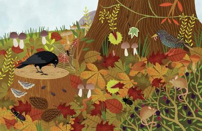 autumn-leaves-jpg