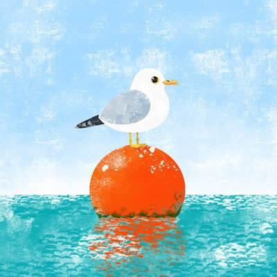 seagull-jpg