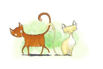 cats-jpg-13