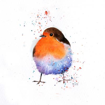 splashy-robin-4-jpg