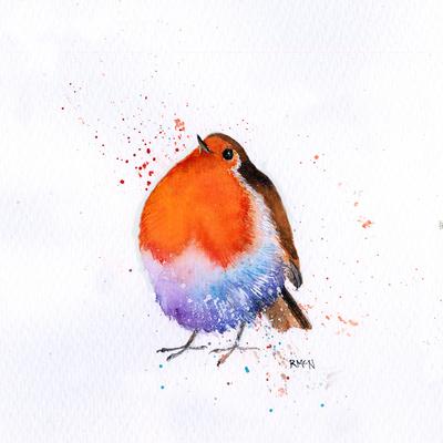 splashy-robin-3-jpg