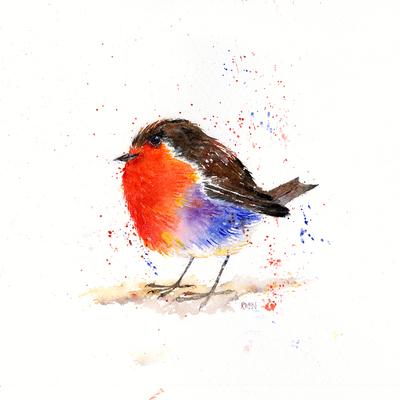 rainbow-robin-jpg