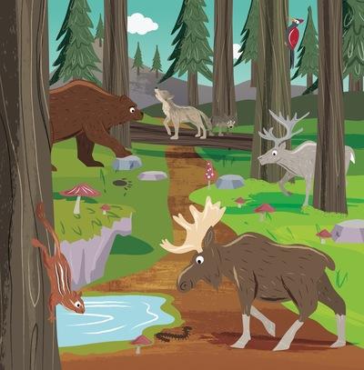 kindergartenactivity-pg061-find-northern-forest-v1-1-jpeg