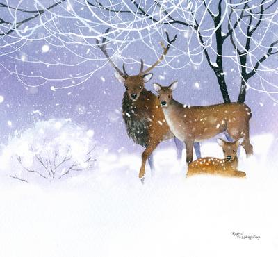 deer-family-jpg