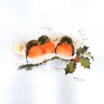 cute-robins-small-jpg