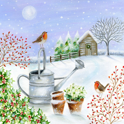 christmas-robin-watering-can-holly-moon-berries-jpg