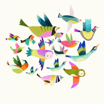 birds-01-jpg