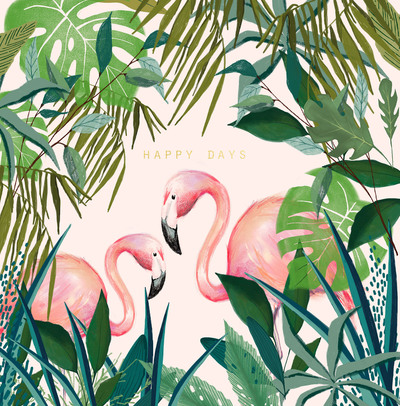 flamingos-design-01-jpg