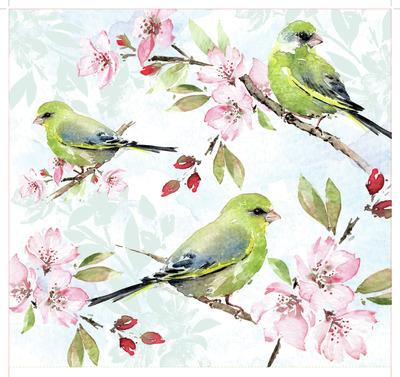 dib-greenfinches-march-jpg