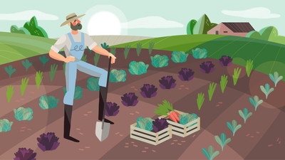 farmer-in-a-field-with-vegetables-jpg