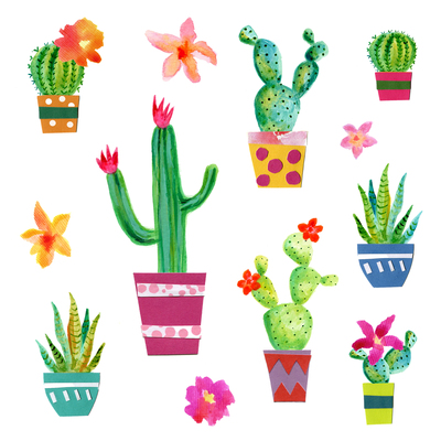 birthday-cactus-flowers-jpg