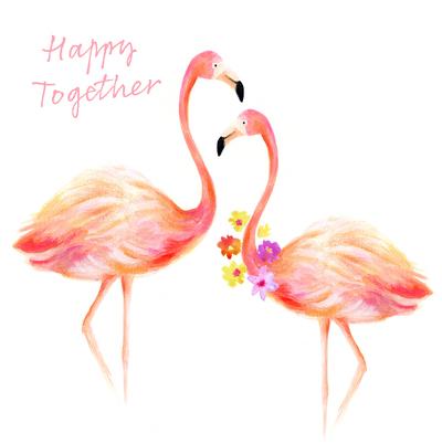 anniversary-flamingo-flowers-jpg