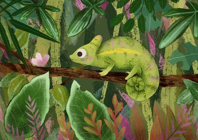 chameleon-jpg-4