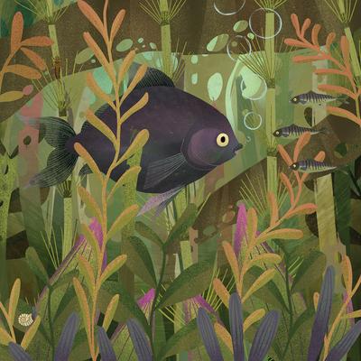 fish-and-waterweeds-jpg