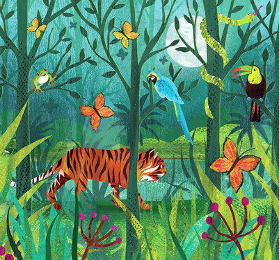 claire-mcelfatrick-jungle-tiger-spread-jpg