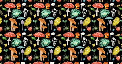 fungus-endpapers-png