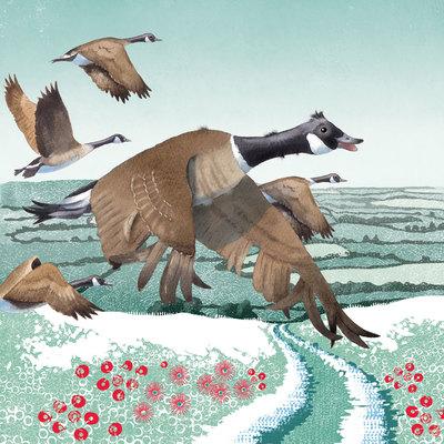 goose-migration-jpg
