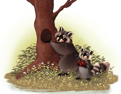 raccoons-png