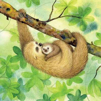 sloth-watercolour-mother-baby-book-jpg