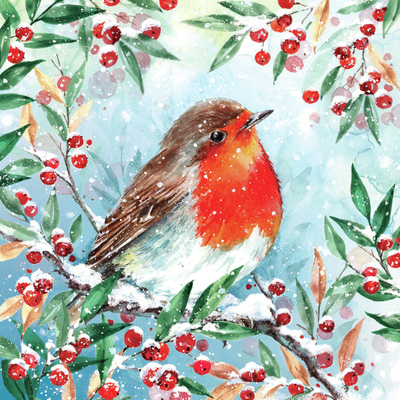00421-dib-robin-berries-jpg