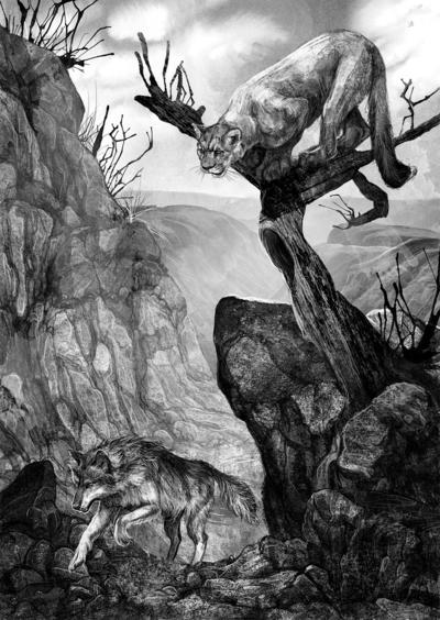 monicaarmino-wolfwander12-jpg