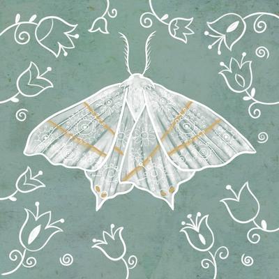 sylwia-filipczak-moth-3-jpg