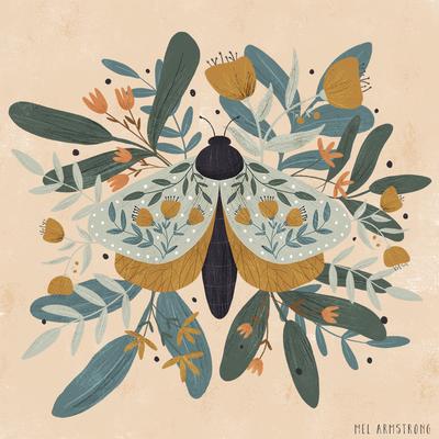 moth-web-jpg