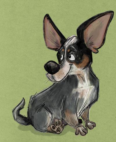 australian-dog-jpg
