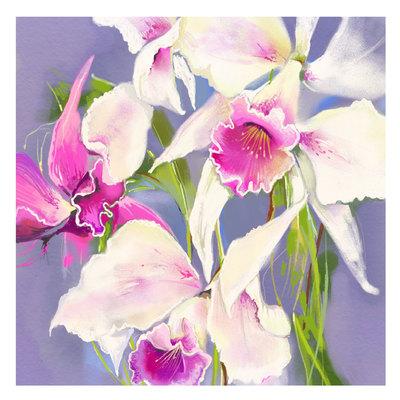 pink-flowers-01-jpg