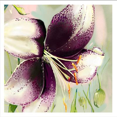 lily-01-jpg