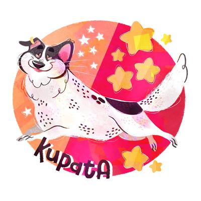 dog-happy-stars-kupata-jpg