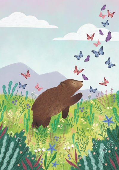 bear-catalog-cover-png