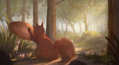 forest-nature-squirrel-mushrooms-plants-trees-rocks-moss-environment-landscape-jpg