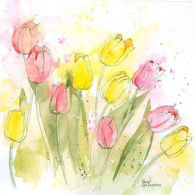 mixed-tulips-l-and-w-jpg