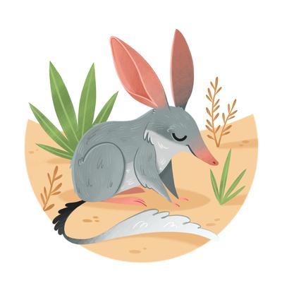 bilby-australia-marsupial-desert-jpg