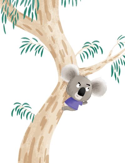 koala-png