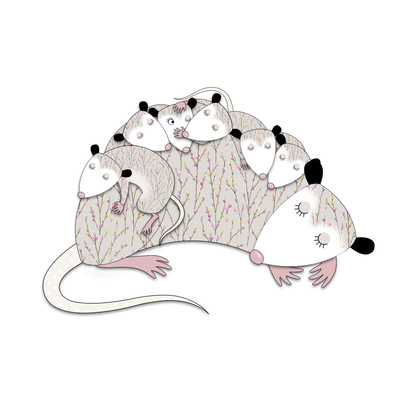 possum-family-sleeping-jpg