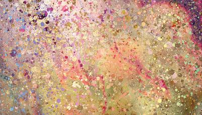 lsk-agate-princess-florals-splatter-jpg