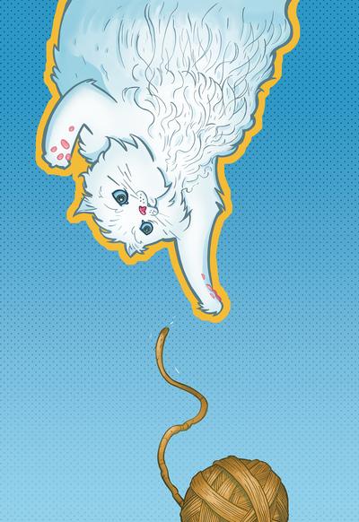 persian-cat-yarn-jpg