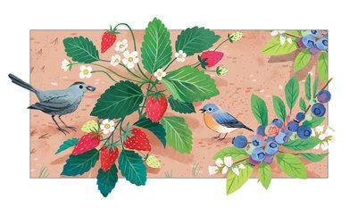 jjp-flora-color-s5-v2-jpg