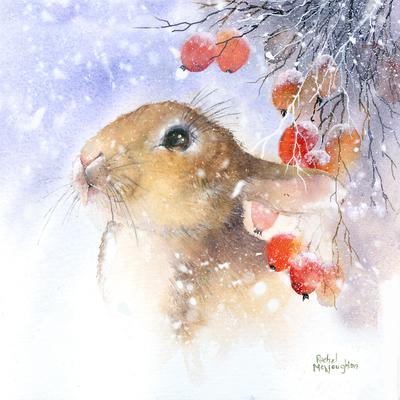 snowy-berry-bunny-jpg
