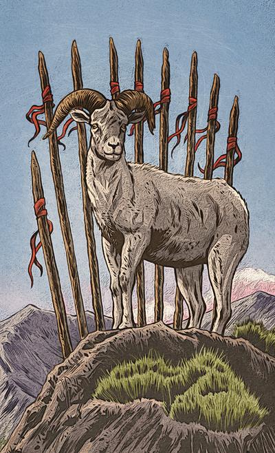 esmith-llewellynanimaltarot2-animals-tarot-nature-jpg