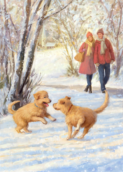 dr3-dogs-playing-in-the-snow-jpg