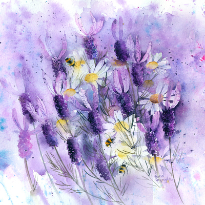 french-lavender-with-daisies-jpg