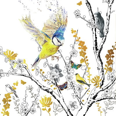 bluetit-blossoms-jpg
