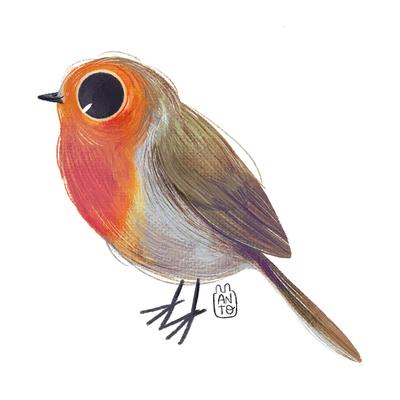bird-jpg-18