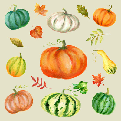 thanks-giving-squash-pumpkin-leaves-jpg